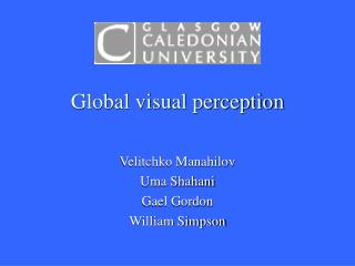 Global visual perception