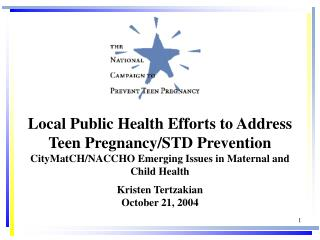 Local Public Health Efforts to Address Teen Pregnancy/STD Prevention CityMatCH/NACCHO Emerging Issues in Maternal and Ch