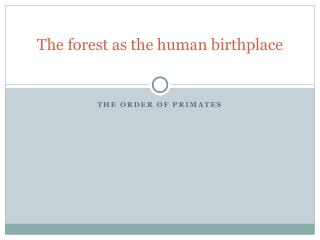The forest as the human birthplace