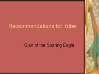 Recommendations for Tribe