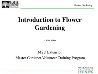 Introduction to Flower Gardening