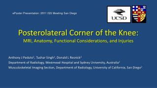 Posterolateral Corner of the Knee:  MRI, Anatomy, Functional Considerations, and Injuries