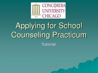 Applying for School Counseling Practicum
