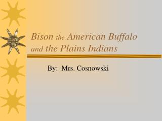 Bison  the  American Buffalo and  the Plains Indians