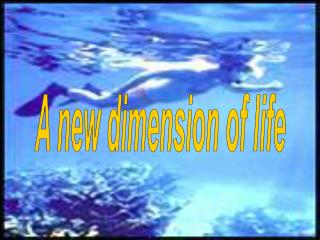 A new dimension of life