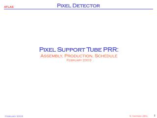 Pixel Support Tube PRR: Assembly, Production, Schedule February 2003