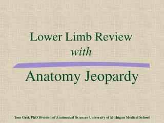 Lower Limb Review with