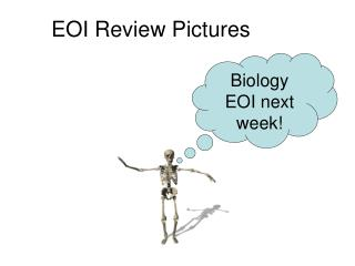 EOI Review Pictures