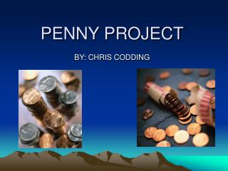 PENNY PROJECT