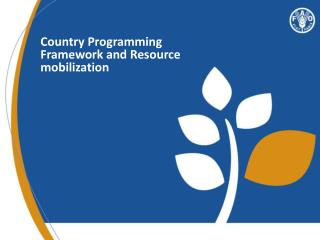 Country Programming  Framework and Resource mobilization