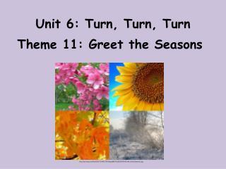 Unit 6: Turn, Turn, Turn