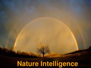 Nature Intelligence