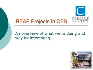 REAP Projects in CBS