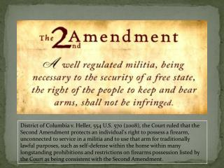Is the 2 nd Amendment Still Relevant?