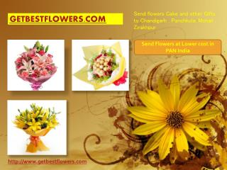 Online Flowers,Cakes and Gifts Delivery Services by Punsons