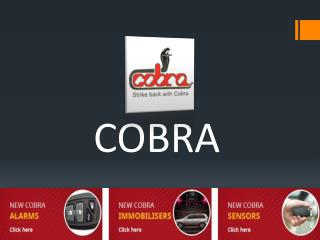 COBRA-Car Security System that you can rely upon