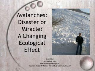 Avalanches:  Disaster or Miracle A Changing Ecological Effect