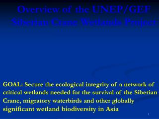 Overview of the UNEP/GEF  Siberian Crane Wetlands Project