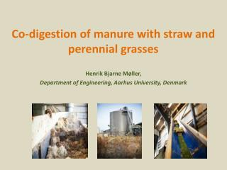 Co-digestion of manure with straw and perennial  grasses
