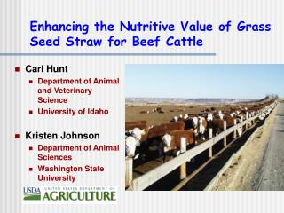 Enhancing the Nutritive Value of Grass Seed Straw for Beef Cattle