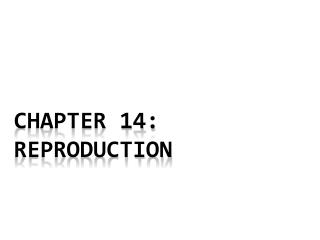 chapter 14:  Reproduction