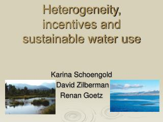 Heterogeneity, incentives and sustainable water use