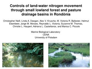 Controls of land-water nitrogen movement  through small lowland forest and pasture
