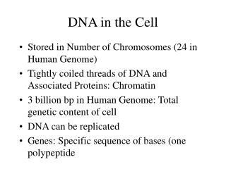 DNA in the Cell