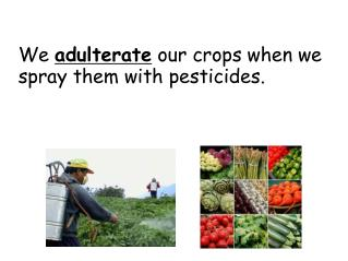 We  adulterate  our crops when we spray them with pesticides.