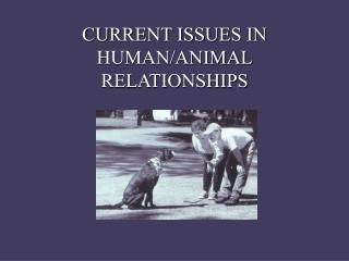 CURRENT ISSUES IN HUMAN/ANIMAL RELATIONSHIPS