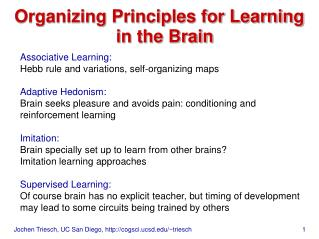 Organizing Principles for Learning in the Brain