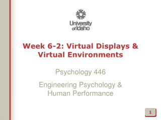 Week  6-2:  Virtual Displays & Virtual Environments