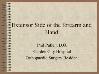 Extensor Side of the forearm and Hand