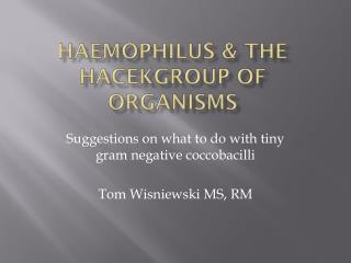 Haemophilus  & the  HACEKGroup  of Organisms