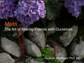 Maitri The Art of Making Friends with Ourselves