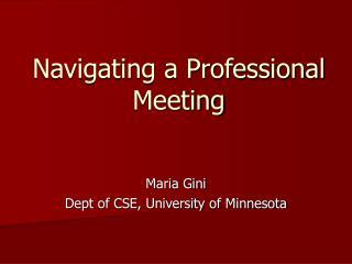 Navigating a Professional Meeting