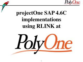projectOne SAP 4.6C  implementations  using RLINK at