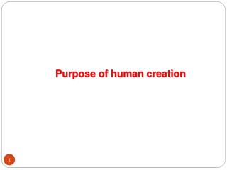 Purpose of human creation