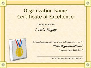 Organization Name Certificate of  Excellence