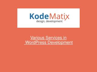 Various Services in WordPress-Development