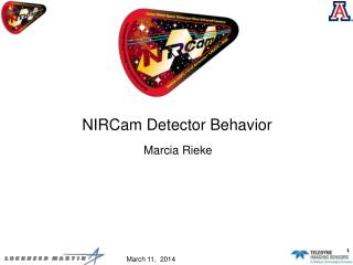 NIRCam Detector Behavior