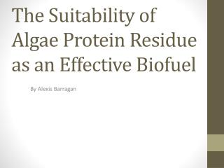 The Suitability of Algae Protein Residue as an Effective Biofuel