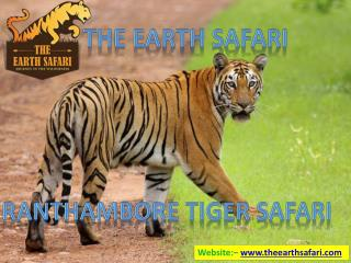 Places to See in Ranthambore National Park