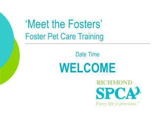 'Meet the Fosters' Foster Pet Care Training