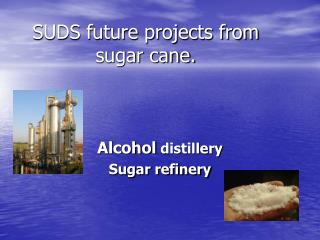 SUDS future projects from sugar cane.
