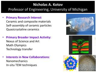 Nicholas A. Kotov Professor of Engineering, University of Michigan