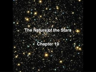 The Nature of the Stars