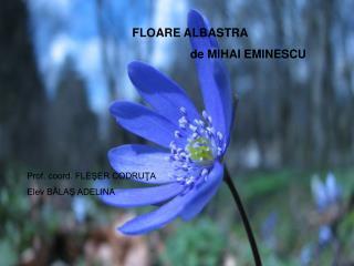 FLOARE ALBASTRA de MIHAI EMINESCU