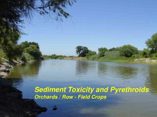 Sediment Toxicity and Pyrethroids  Orchards / Row - Field Crops