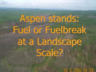 Aspen stands: Fuel or Fuelbreak at a Landscape Scale?